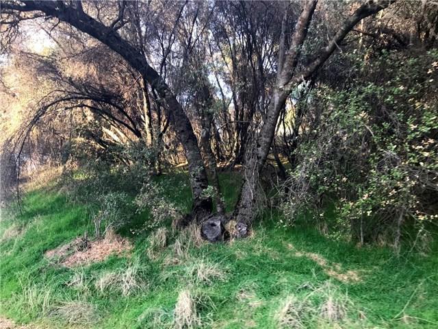 40617 Goldside Drive, Oakhurst, CA, 93644