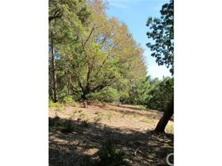 0 Big Basin Way, Outside Area (Inside Ca) CA: http://media.crmls.org/medias/8a34ec7d-1b6c-43f5-94cc-5e92c5e25fb0.jpg