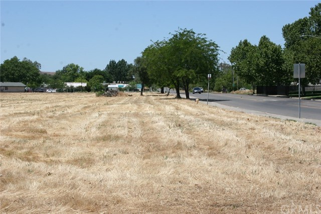 0 Table Mountain Oroville, CA 0 - MLS #: SN18165245