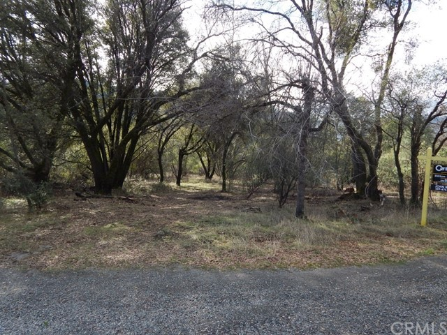 2.32 AC Golden Ball Drive, Oakhurst, CA, 93644