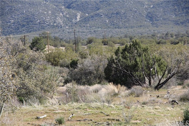 0 Jeraboa / Pozo Road, Mountain Center CA: http://media.crmls.org/medias/8b44db4f-620a-4c1e-adb9-b7a72c5e8013.jpg