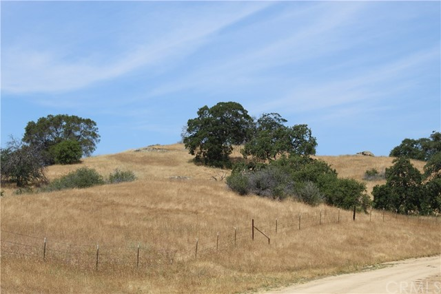 36.34 AC Olive Orchard Road, Raymond, CA, 93653
