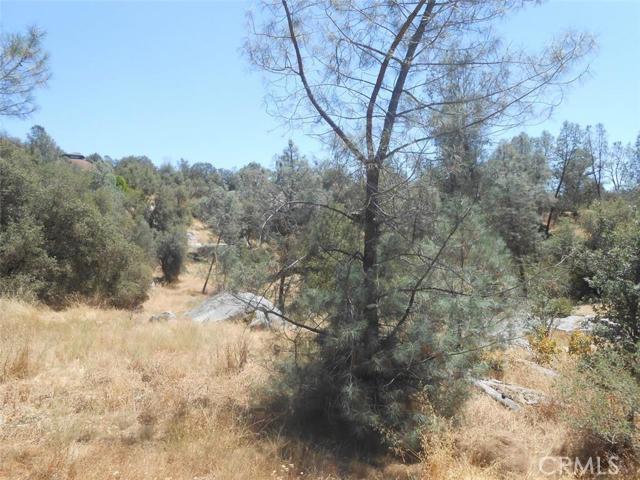 0 Deep Forest Drive Coarsegold, CA 93614 - MLS #: YG16159065