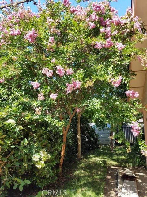 1169 Ceres Manor Court, Chico CA: http://media.crmls.org/medias/8d238f5c-7a18-42aa-a0ca-e13ab5c3c2ed.jpg