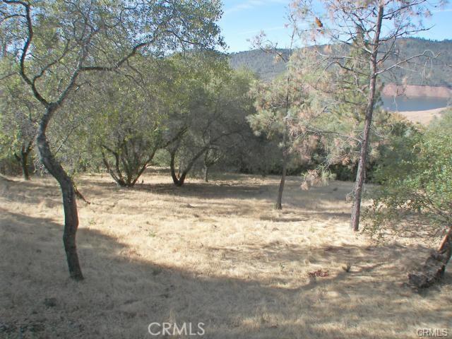 0 Bell Ranch Road, Berry Creek CA: http://media.crmls.org/medias/8d904156-f2a0-43d2-be61-a9a01b33ec65.jpg