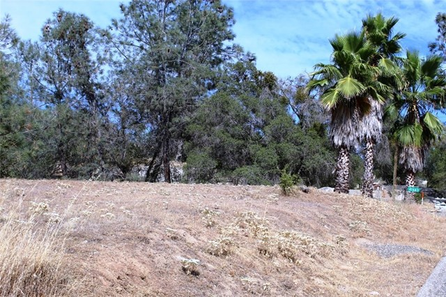 Lot 1703 Long Hollow Drive, Coarsegold, CA, 93614