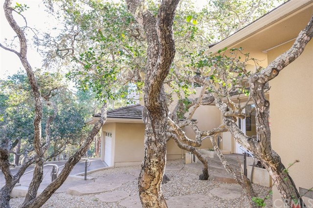 685 Evelyn Court Cambria, CA 93428 - MLS #: SC17075358