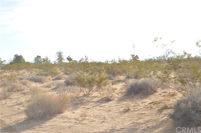 0 Two Mile Road, 29 Palms, CA, 92277
