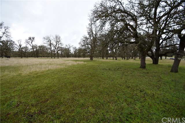 0 Dunstone Drive, Oroville CA: http://media.crmls.org/medias/8e3f9bb7-b630-44e6-b52e-262a64674b79.jpg