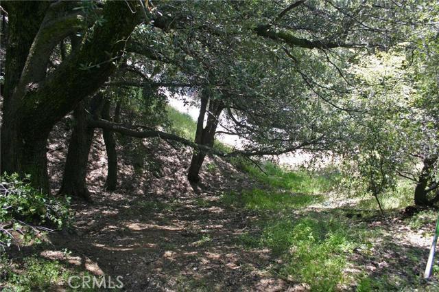 0 Berne Drive, Crestline CA: http://media.crmls.org/medias/8e83d960-84e2-44d5-b4a4-25f12a9f7bb8.jpg