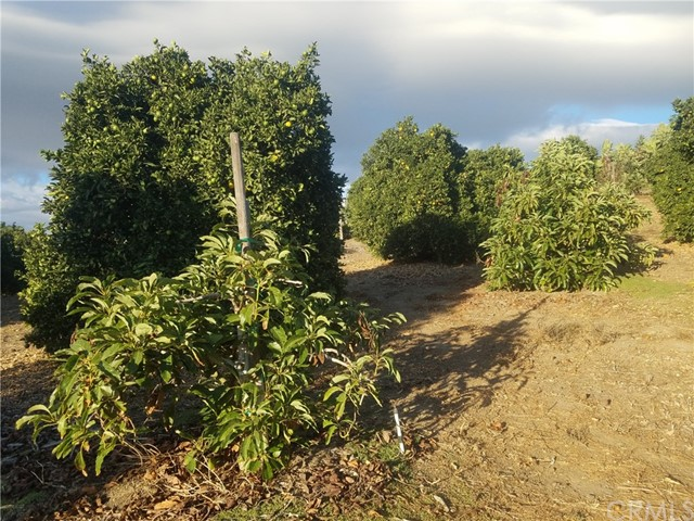 0 Sandia Creek Dr, Temecula, CA  Photo 63