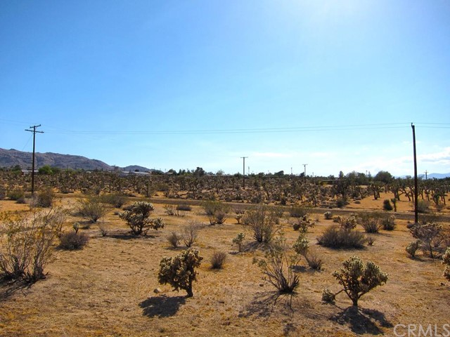 Additional photo for property listing at 61400 Division Street  Joshua Tree, California 92252 United States