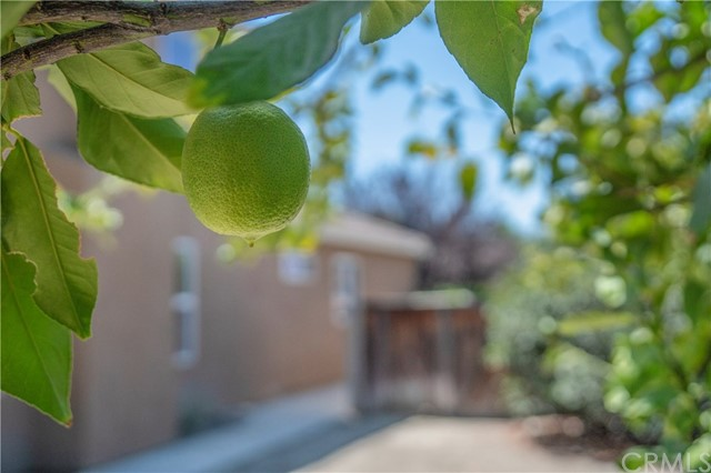 1307 Reinhart Street, San Jacinto CA: http://media.crmls.org/medias/8f076c0c-854a-4db6-8fec-bba0d765c983.jpg