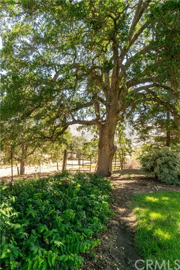 19799 Campbell Creek Drive, Springville CA: http://media.crmls.org/medias/90f1b496-84c1-4e03-a170-caca0daeded9.jpg