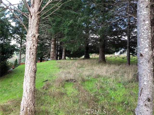 542 Redwood Road, Shelter Cove CA: http://media.crmls.org/medias/9168b72c-9839-40d3-be22-6dd750c6fcdc.jpg