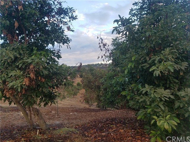0 Sandia Creek Dr, Temecula, CA  Photo 43