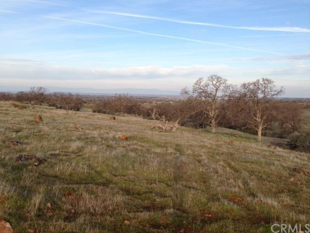 Land for Sale at Hwy 32 Chico, California 95928 United States