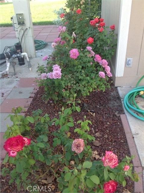 823 Birch Drive San Jacinto, CA 92583 - MLS #: SW17215253