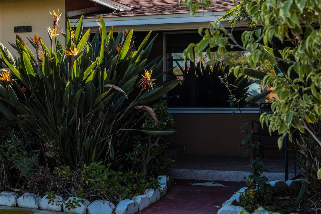 245 N Evelyn Dr, Anaheim, CA 92805 Photo 10