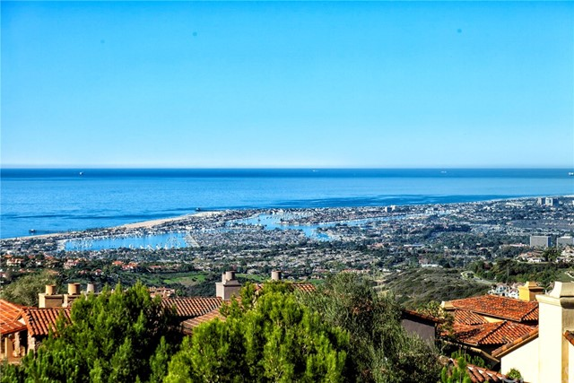 51 Overlook Dr  Newport Coast, CA 92657