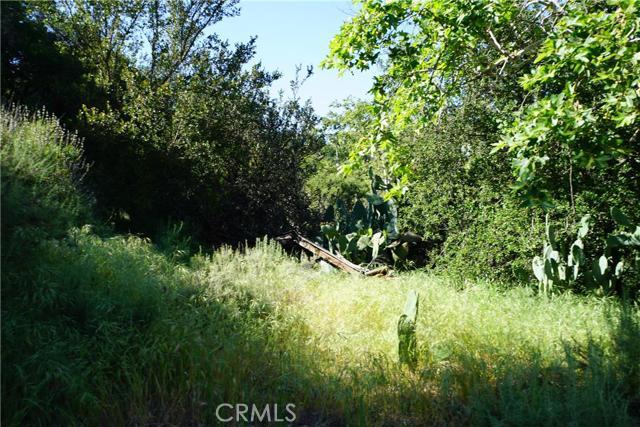 Single Family for Sale at 20335 Adkinson Drive Trabuco Canyon, California United States
