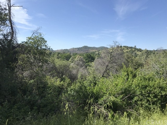 0 Spring Creek Road Mariposa, CA 95338 - MLS #: YG17230377