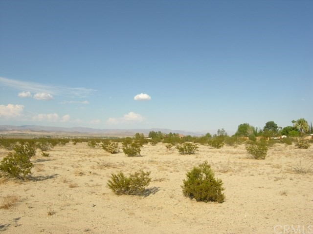 0 Two Mile Road, 29 Palms CA: http://media.crmls.org/medias/9385af21-f9c3-49fc-b27f-97d7eba450a3.jpg