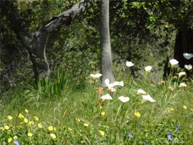 0 Wilton Drive, Cambria CA: http://media.crmls.org/medias/93d404f7-deed-4733-9eed-0059538ba53c.jpg