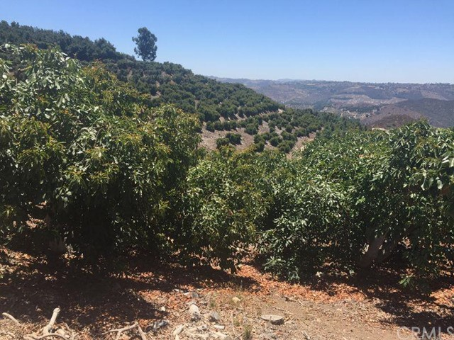 0 Pauma Ridge Road, Pala CA: http://media.crmls.org/medias/942ae639-7de4-4ac0-995d-b2d15b170f06.jpg