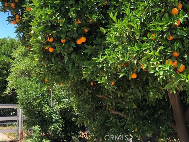 23 Fuerte, Temecula, CA  Photo 10