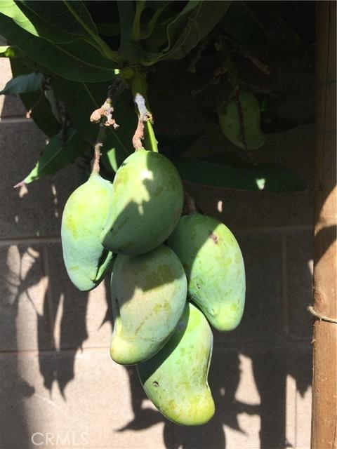 25 Peach Blossom, Irvine CA: http://media.crmls.org/medias/9560e808-83ce-4358-9bf0-ee7a89b1e3aa.jpg