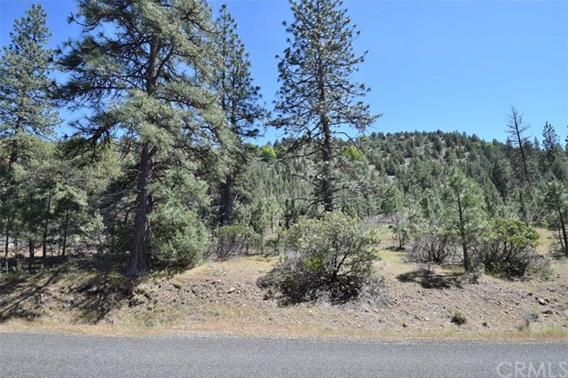 Single Family for Sale at 0 Lot 184 Lake Shore Drive Weed, California 96094 United States