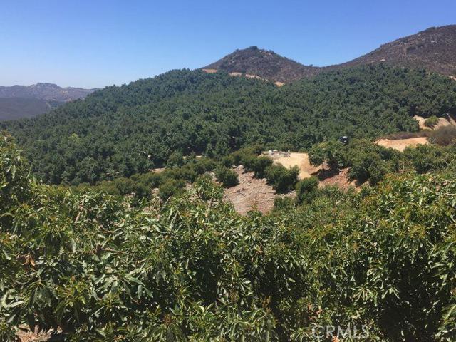 0 Pauma Ridge Road, Pala CA: http://media.crmls.org/medias/971ef888-5e2e-4da1-b960-bd980234b266.jpg