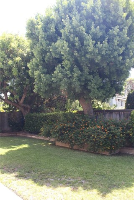 2 Westport, Irvine, CA 92620 Photo 12