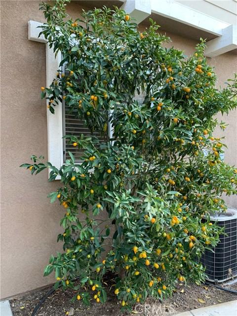 7324 Reserve Place, Rancho Cucamonga CA: http://media.crmls.org/medias/97662700-174b-4677-bfd9-ec2c4c1c32a6.jpg
