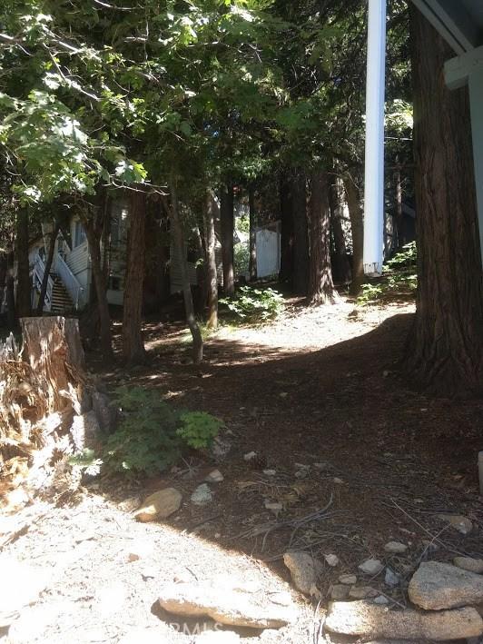 1223 Bear Springs Rd, Rimforest CA: http://media.crmls.org/medias/976d8aae-6f19-44d2-8fe0-074a858af064.jpg