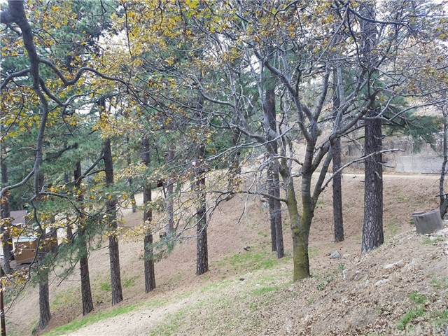 0 Elliot Road, Crestline CA: http://media.crmls.org/medias/9822b95a-780c-4fb7-9697-0dcf829d7b66.jpg