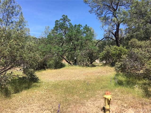 Lot 1750 Long Hollow Drive, Coarsegold, CA, 93614