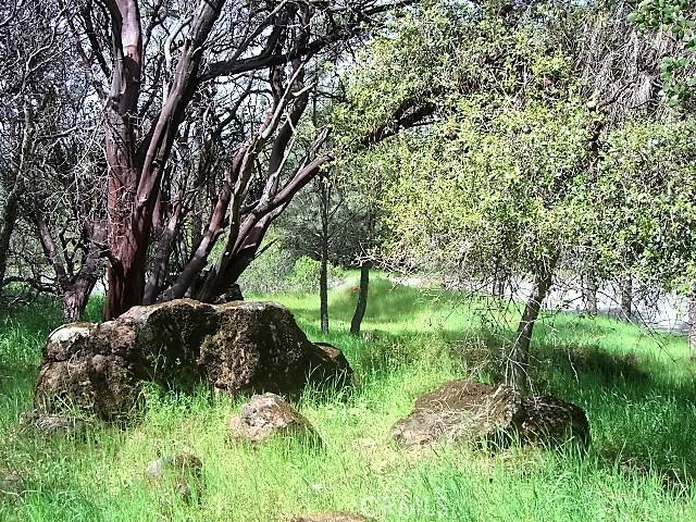 18605 Pine Flat Court, Hidden Valley Lake CA: http://media.crmls.org/medias/994830e7-a58c-4f21-8a3b-544ee3f59a64.jpg