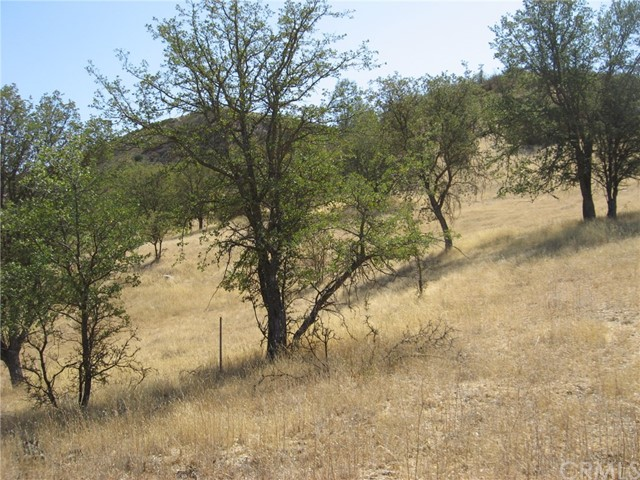 4263 Calf Canyon Creston, CA 93432 - MLS #: NS17233977