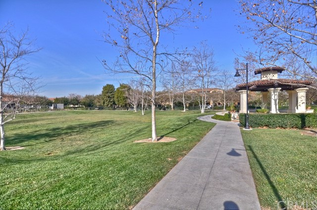 15 Foliage, Irvine, CA 92603 Photo 31