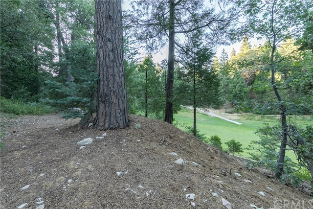 125 N Fairway Drive Lake Arrowhead, CA 92352 - MLS #: EV17149731