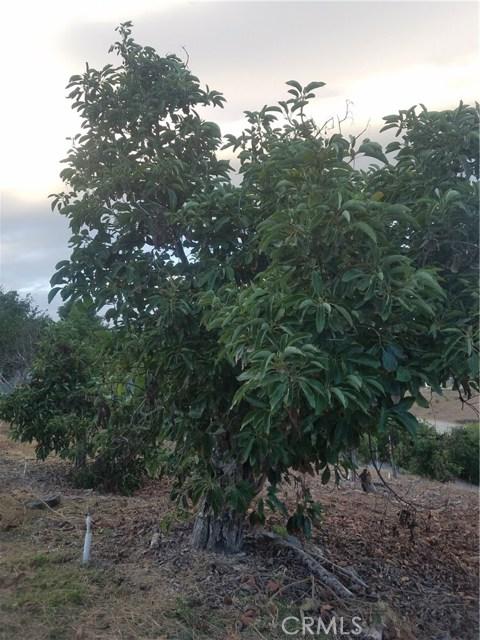 0 Sandia Creek Dr, Temecula, CA  Photo 46