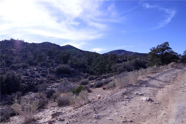 45448 Burns Canyon Road, Pioneertown CA: http://media.crmls.org/medias/9dba864e-49bc-4196-8b0c-381abc5aa1eb.jpg