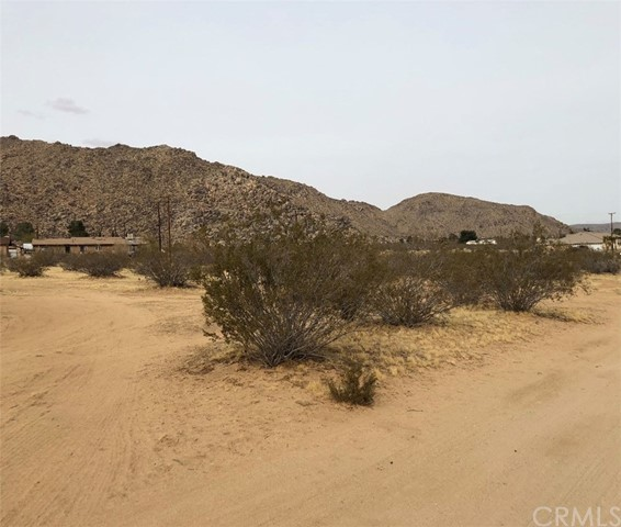 23960 Cuyama Road, Apple Valley, CA, 92307