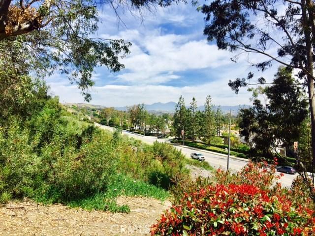 33402 Valley View Court 1, Dana Point, CA 92629
