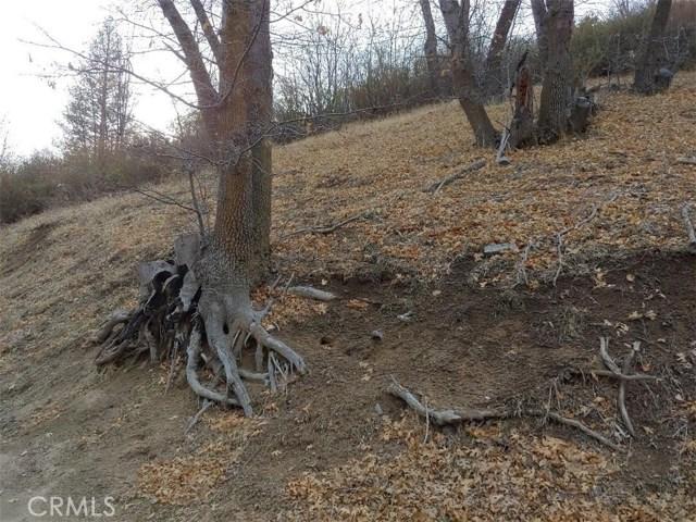 0 Eucalyptus Road, Cedar Glen CA: http://media.crmls.org/medias/9e8e0e8a-dee3-4ef0-9829-554568ea43bd.jpg