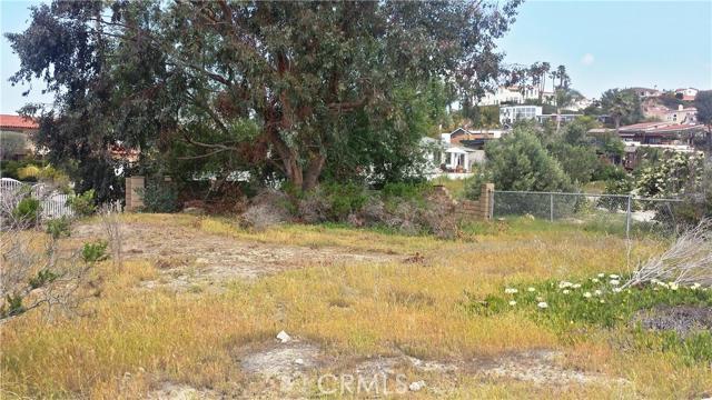 1205 Via La Mesa San Clemente, CA 92672 - MLS #: OC16075081