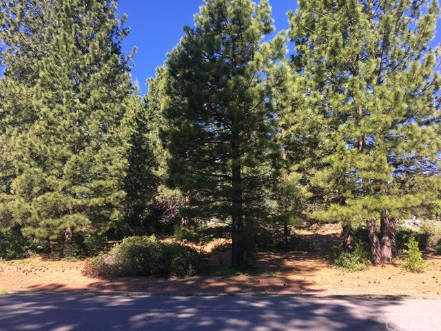 Single Family for Sale at 303 Durkin Drive Lake Almanor, California 96137 United States