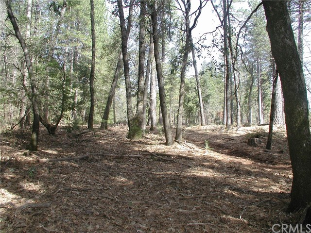 0 Garland Road Forest Ranch, CA 95942 - MLS #: SN18048019